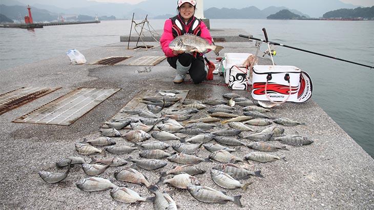 大分県佐伯港にて。キープした魚は黒鯛55cmを筆頭に計65枚の黒鯛、大アジ43cmを筆頭に6枚のアジ。25cm以下の黒鯛は全てリリースした。 アタリはわずかな押さえ込みばかり。わずかな変化を捉えることができるかが勝負。